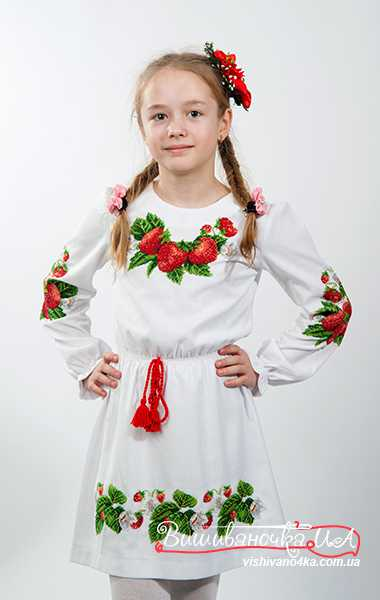 Купити вишиті сукні та спідниці для дівчат в інтернет-магазині 97de05414916a
